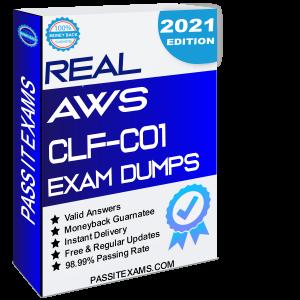 AWS Certified Cloud Practitioner CLF-C01 Exam Dumps