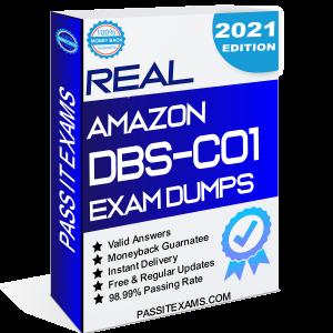 DBS-C01 Dumps