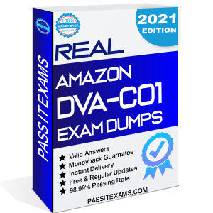 DVA-C01 Dumps